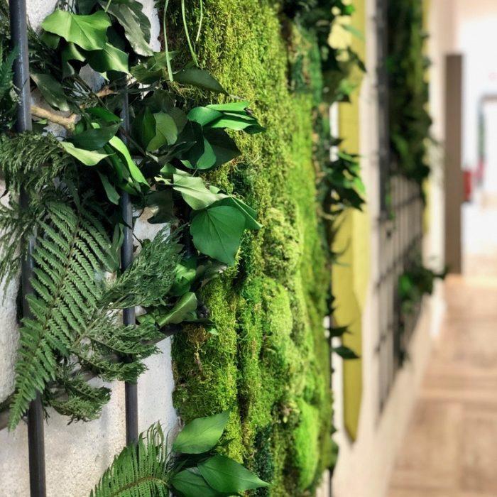 plantas preservadas decoracion interiores